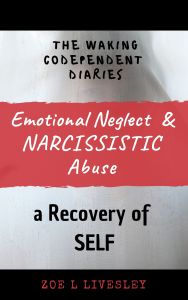 Emotional and Narcissistic Abuse copy